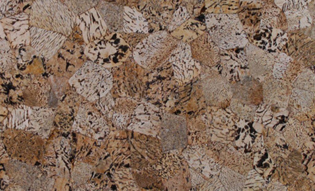 Tiger Skin Granite Countertops Seattle